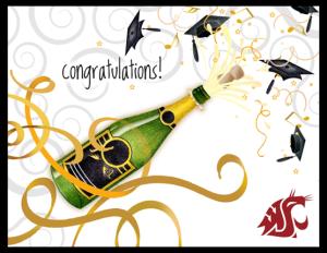 FL 81 - champagne pop grad WSU copy