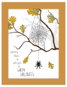 spider branch