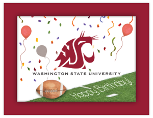 CG 42b - football sideline 'birthday'