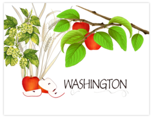 SP 10b - washington apples